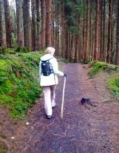 Walking to Glenbarrow Waterfall Co Laois