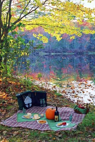 optimized-book_autumnscene